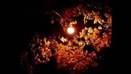 در خلوت شبهای من  عبدالوهاب شهیدی