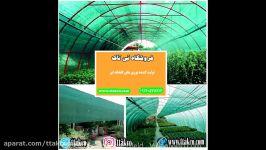 تولید کنندگان توری گلخانه،توری گلخانه،توری سبز سایبان 09120578916