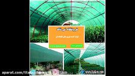 تولید توری سایبان،توری گلخانه شیراز،خرید توری سایبان 09120578916