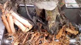 تکنولوژی مدرن ریزه ریزه ریزه کردن کنده های بزرگ درخت.