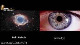 خلقت بهت آور خداوند؛ شباهت چشم اعضای بدن عالم کهکشانها