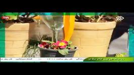 سرنا نوازی امین رحیمی در برنامه تازه شو شبکه دو،سرنا نوروز