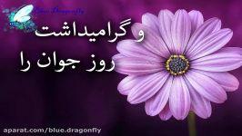 کلیپ تبریک ولادت حضرت علی اکبر تبریک روز جوان تبریک رسمی