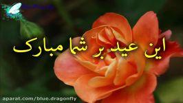 کلیپ تبریک ولادت امام زمان تبریک نیمه شعبان کلیپ تبریک تولد حضرت مهدی موعود