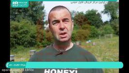 فیلم آموزش زنبور داری  آموزش زنبور داری  آموزش زنبور داری پرورش زنبور عسل
