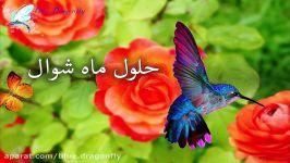 کلیپ تبریک عید فطر تبریک عید فطر تبریک عید رمضان پیام تبریک عید فطر مبارک