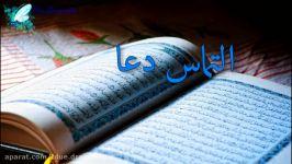 کلیپ شب قدر توسل به حضرت علی دعای شب های قدر کلیپ شب احیا التماس دعا
