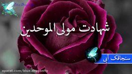 کلیپ شب قدر توسل به امام علی آهنگ شب قدر احیا کلیپ شهادت حضرت علی التماس دعا