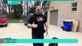 آموزش تربیت سگ  تربیت سگ خانگی  تربیت سگ روتوایلر تربیت روت وایلر
