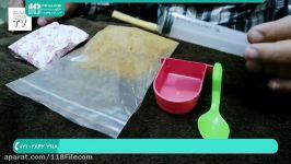 آموزش تربیت طوطی  پرورش طوطی  طوطی ملنگو غذای جوجه طوطی