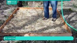آموزش پرورش قارچ  پرورش قارچ در منزل  پرورش قارچ دکمه ای  پرورش قارچ خوراکی