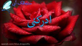 کلیپ تبریک ولادت امام هادی  تبریک میلاد امام علی النقی  تبریک تولد امام هادی