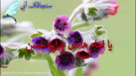 تبریک ولادت امام هادی کلیپ تبریک ولادت امام علی النقی  مولودی میلاد امام هادی