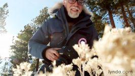 دانلود آموزش عکاسی مناظر کوهستانی برفی...