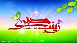 سرود زیبای ولادت حضرت زینبس2کربلایی امیدی مقدم94