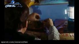 سکانس ترسناک مهیج فیلم مِه Mist قسمت دوم