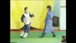 sifu heinrich pffaf wing chun kung fu