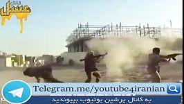 کشته شدن یک قلاده داعشی توسط یک داعشی دیگر