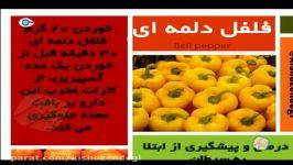 کیش زندگی  خواص خوراکیها  چی بخوریم بهتره  میوه ها