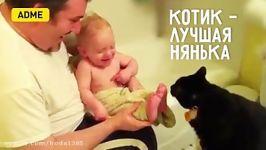 بچه های بامزه گربه های بامزه شون