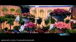 پانزدهمین نمایشگاه بین المللی گل گیاه در بوستان گفتگو