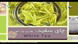 کیش زندگی  خواص خوراکی ها  چای سفید  بی نهایت خواص