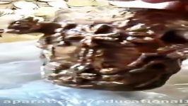 گنج بخش کوچکی گنج فاروق گنج هخامنشی Achaemenid treasure marvdasht