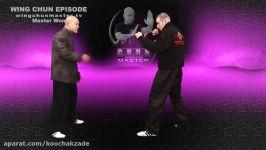 Wing Chun wing chun kung fu Basic Chum Kiu  Episode 6