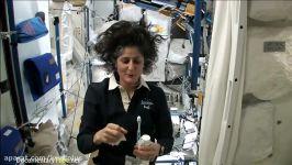 زندگی جالب فضانوردان در ایستگاه فضایی بین المللی