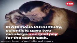 salary confidential  MR1592